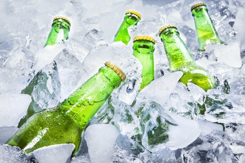 在冰的冰镇啤酒瓶 免版税库存图片