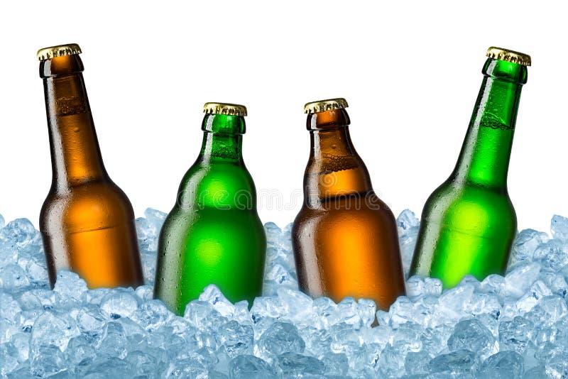 在冰的啤酒瓶 免版税库存图片