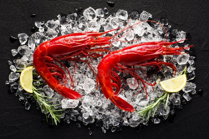 在冰的新鲜的大红色虾在一张黑石桌上 免版税库存照片