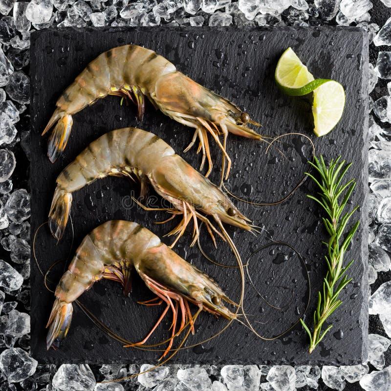 在冰的新鲜的老虎虾在一张黑石桌上 图库摄影