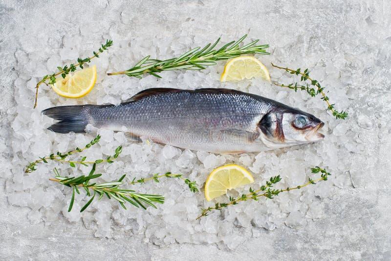 在冰的未加工的鲈鱼用迷迭香、麝香草和柠檬 E 免版税库存图片