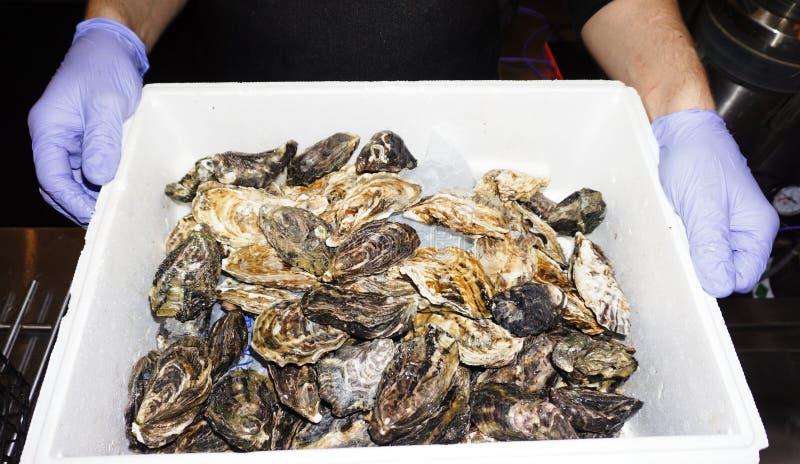 在冰的牡蛎在箱子 批餐馆的新鲜的牡蛎 免版税库存图片