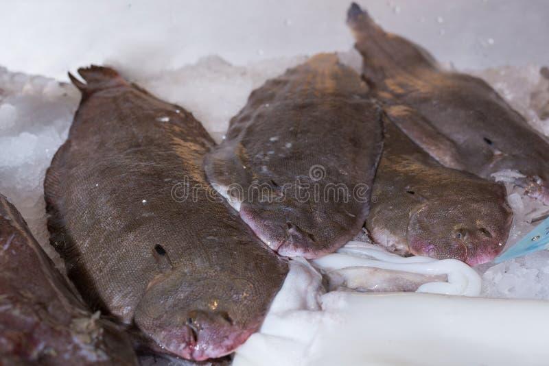 在冰的脚底在鱼贩子 免版税库存照片