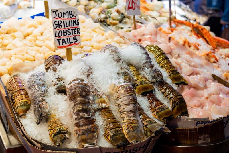 在冰的超大烤的龙虾仁 免版税库存图片