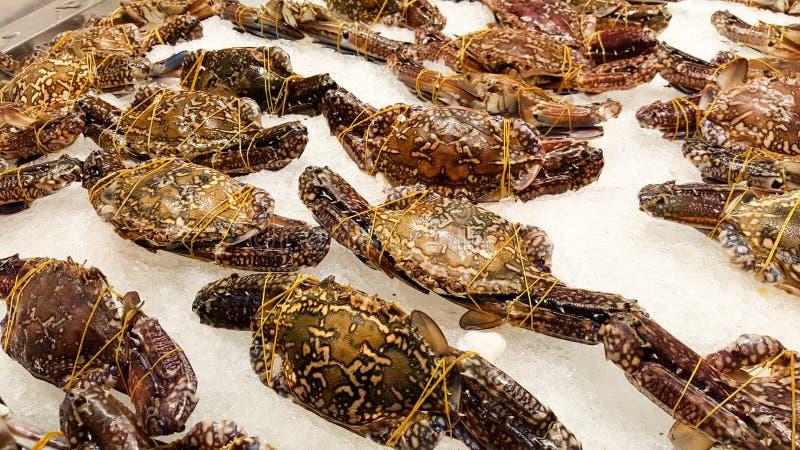 在冰的马螃蟹在超级市场在泰国 库存图片