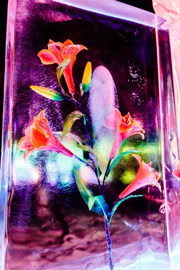 在冰的2013年2月-哈尔滨,中国-花在冰灯节 图库摄影