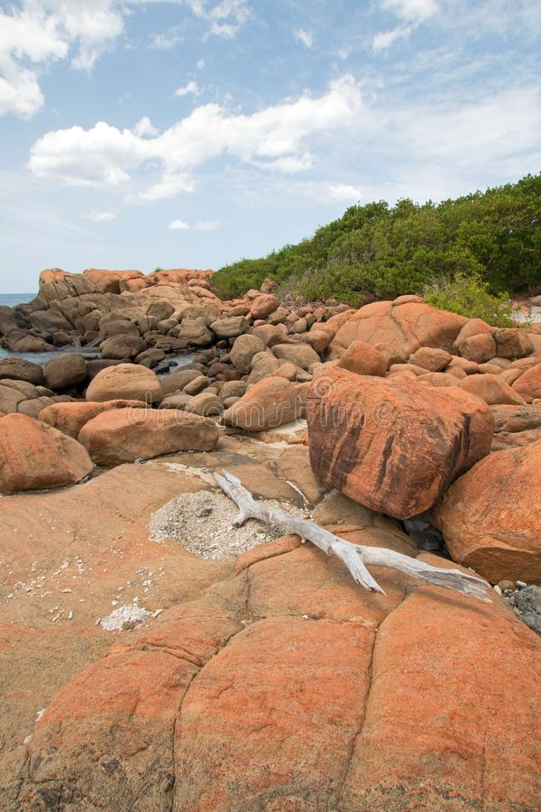 在冰砾中的漂流木头在鸽子海岛国立公园在离尼勒韦利海滩的附近岸在亭可马里斯里兰卡 免版税图库摄影