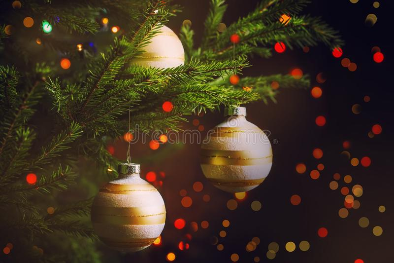 在冷杉分支和ligh背景的金黄圣诞节球  库存图片