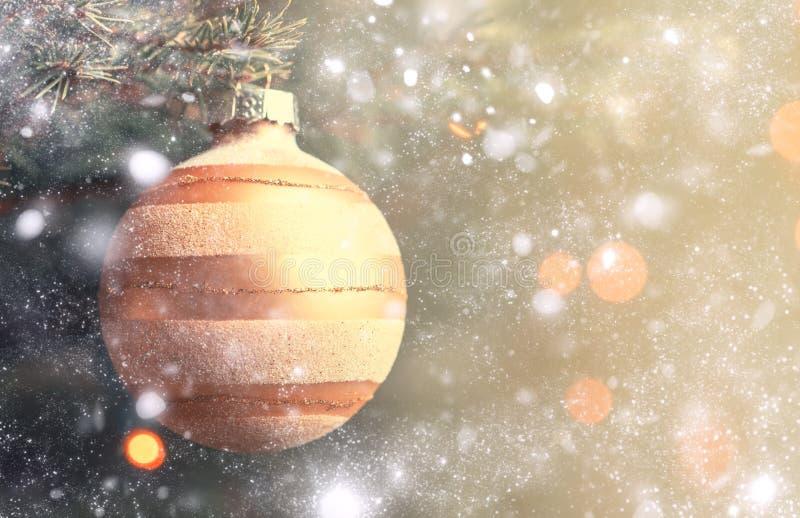 在冷杉分支和ligh背景的金黄圣诞节球  库存照片