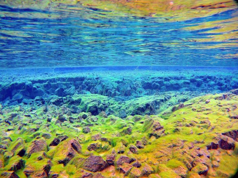 在冷水的Silfra裂痕半水栖的蓝色熔岩世界 图库摄影