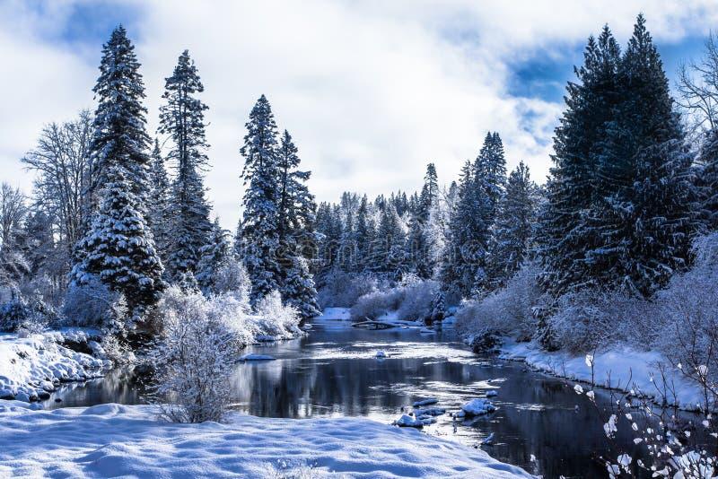 在冷的口气的美好的冬天河风景 免版税库存照片