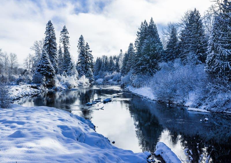 在冷的口气的美好的冬天河风景 库存照片