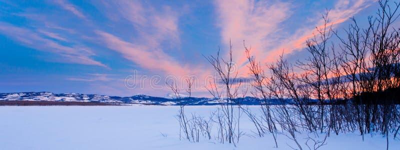在冻结湖Laberge育空加拿大的风景冬天 免版税库存照片