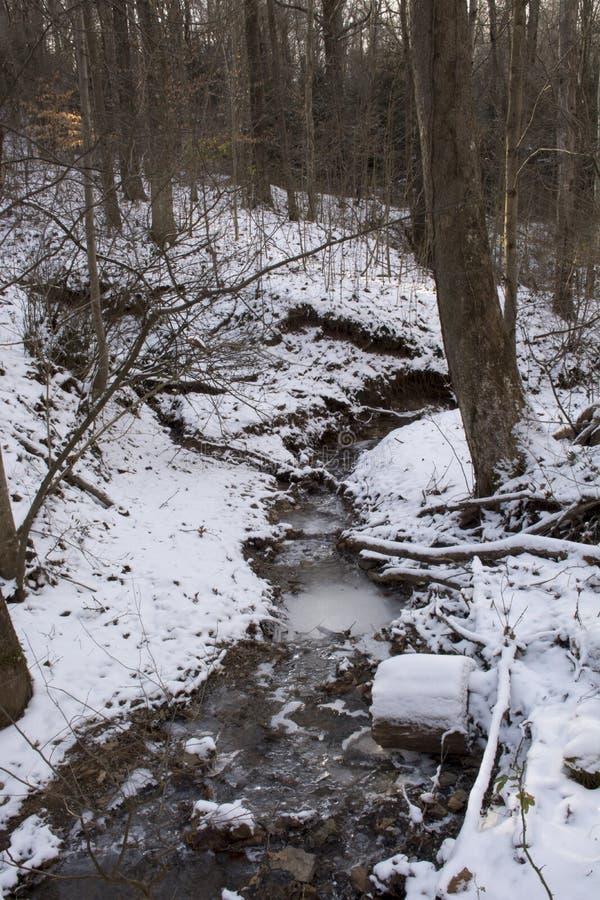 在冻结的冬天风景的小河 免版税库存图片