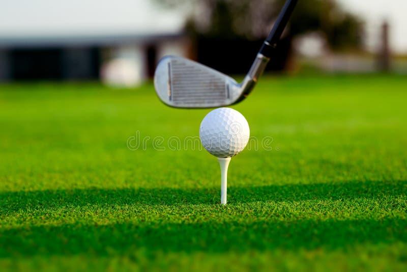 在准备好的发球区域的高尔夫球是射击 库存图片