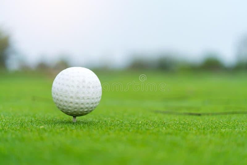 在准备好的发球区域的高尔夫球被射击在高尔夫球法院 免版税库存图片