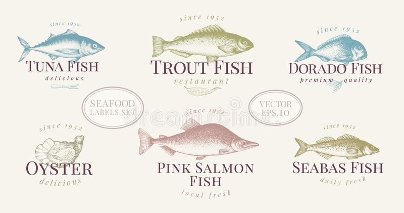 在减速火箭的样式的手拉的鱼和海鲜标号组 传染媒介商标模板 标签可以是餐馆菜单鱼的用途 向量例证