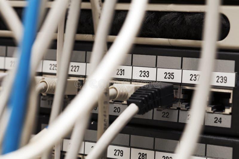 网络缆绳被连接到服务器 库存图片