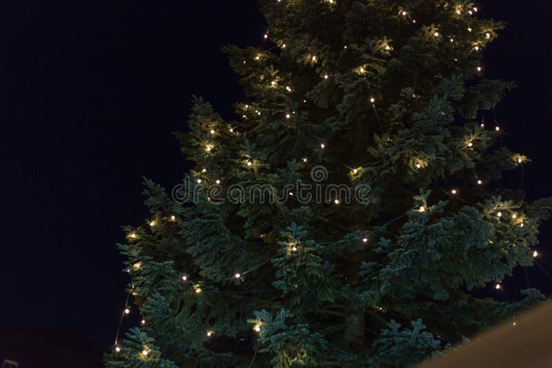在出现xmas市场上的圣诞树在历史城市 免版税库存图片