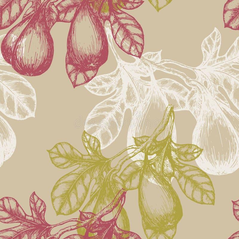在分支手凹道剪影背景样式的无花果果子 无缝的模式 向量例证
