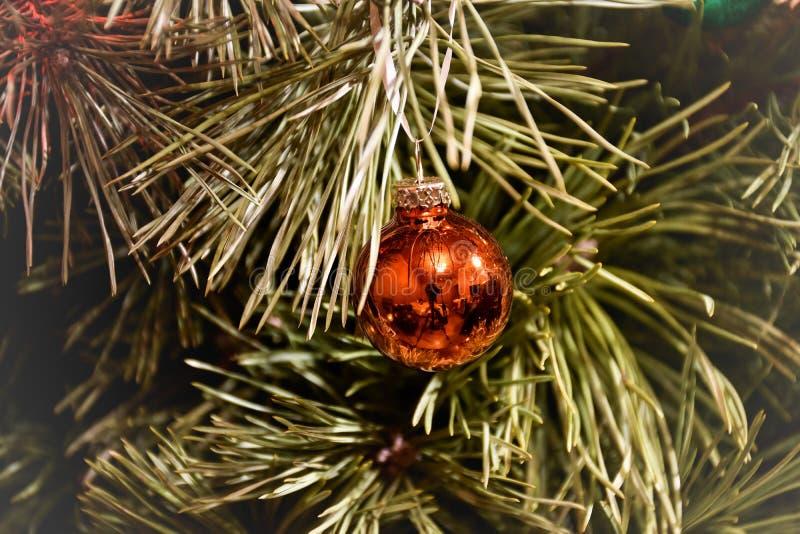 在分支特写镜头的圣诞树玩具 库存照片