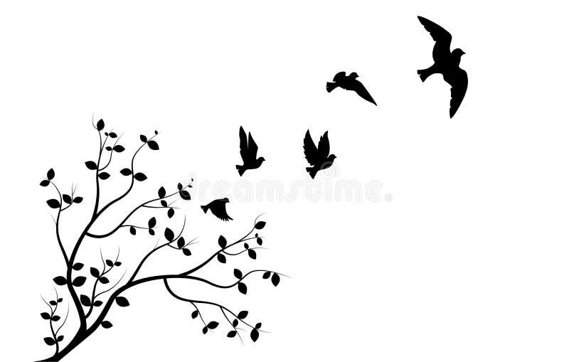 在分支的飞鸟,墙壁标签,三鸟三设计,鸟夫妇现出轮廓 艺术设计,墙壁装饰 皇族释放例证