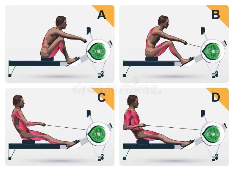 在划船的肌肉工作 向量例证