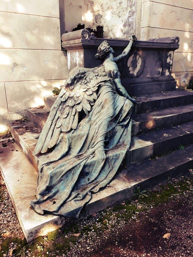 在利古里亚的西部翼的一个下落的天使 库存照片
