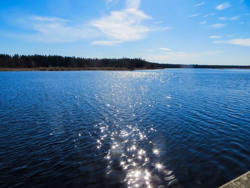 在利耶卢佩河河的深蓝水有从明亮的太阳的强光的在拉脱维亚在早期的春天 免版税库存照片