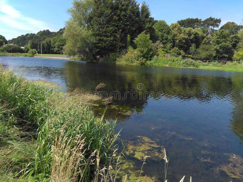 在利菲河的看法在都伯林,纪念公园的爱尔兰 库存图片