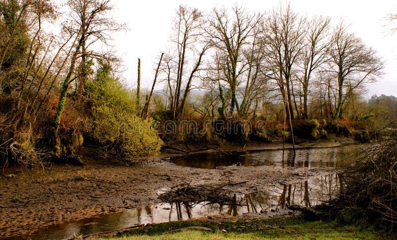 在利马河附近的冬天风景 免版税库存图片