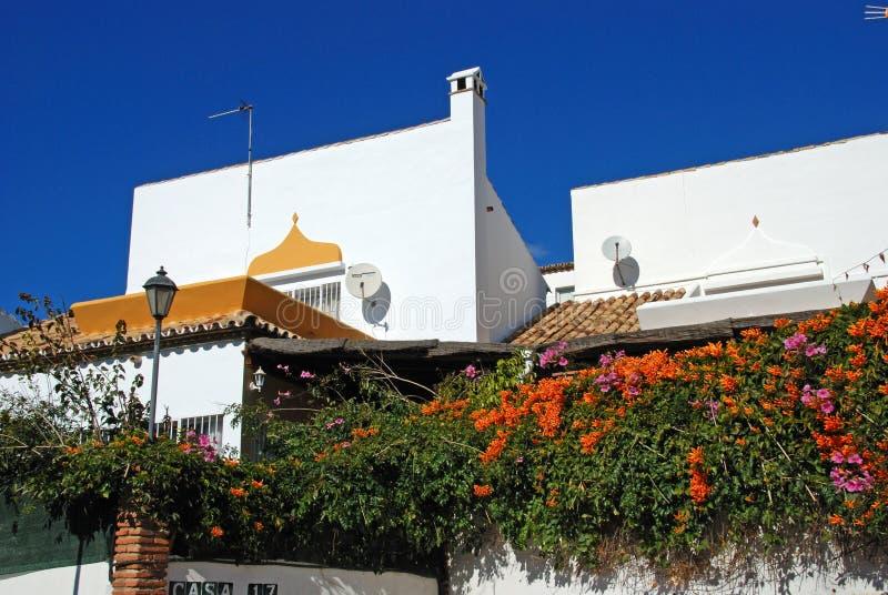 在别墅墙壁上的Pryostegia Venusta,里维埃拉del Sol,西班牙 免版税库存照片