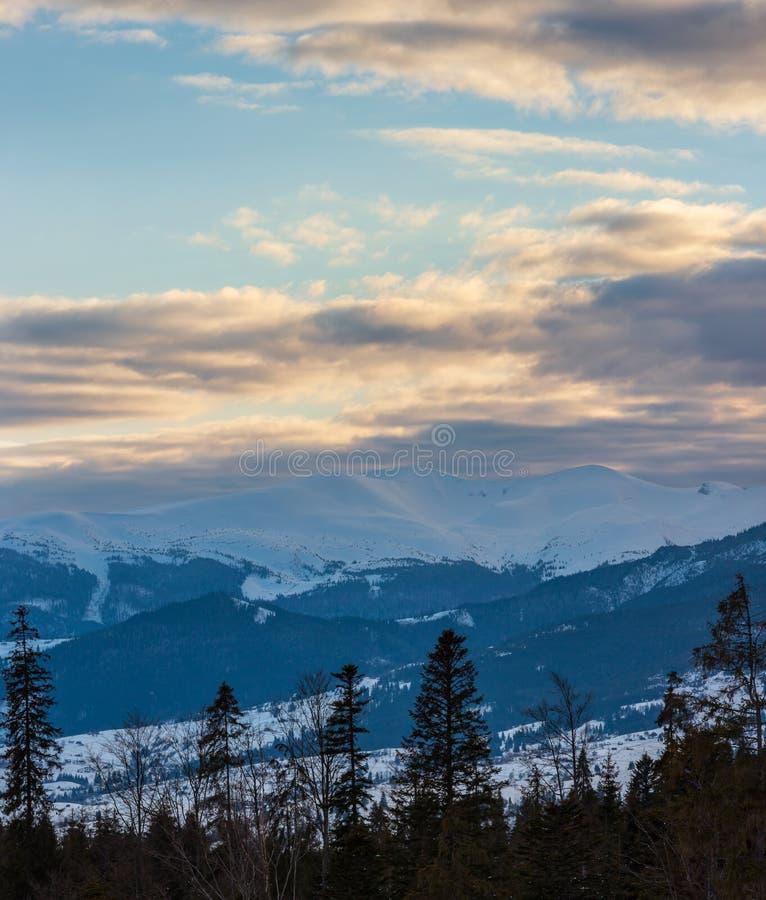 在前淡色太阳光乌克兰,喀尔巴阡山脉,Svydovets的晚上冬天阴云密布天积雪的阿尔卑斯山土坎 免版税图库摄影