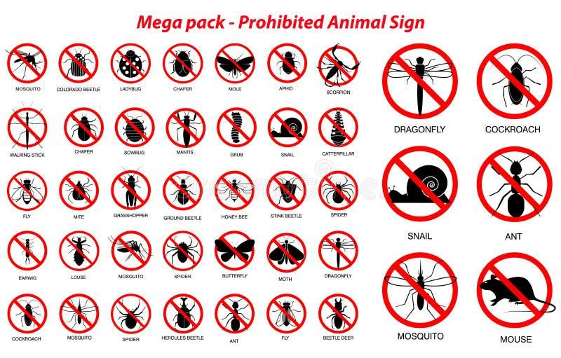 在剪影禁止的设置各种各样的昆虫和动物,与昆虫名字 皇族释放例证