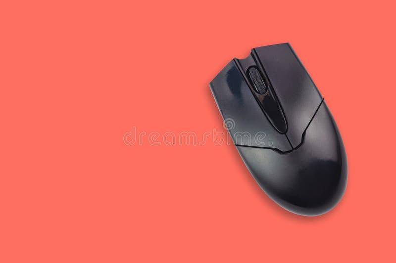 在办公室桌珊瑚颜色的唯一黑塑料光学计算机老鼠 顶视图 复制您的文本的空间 图库摄影