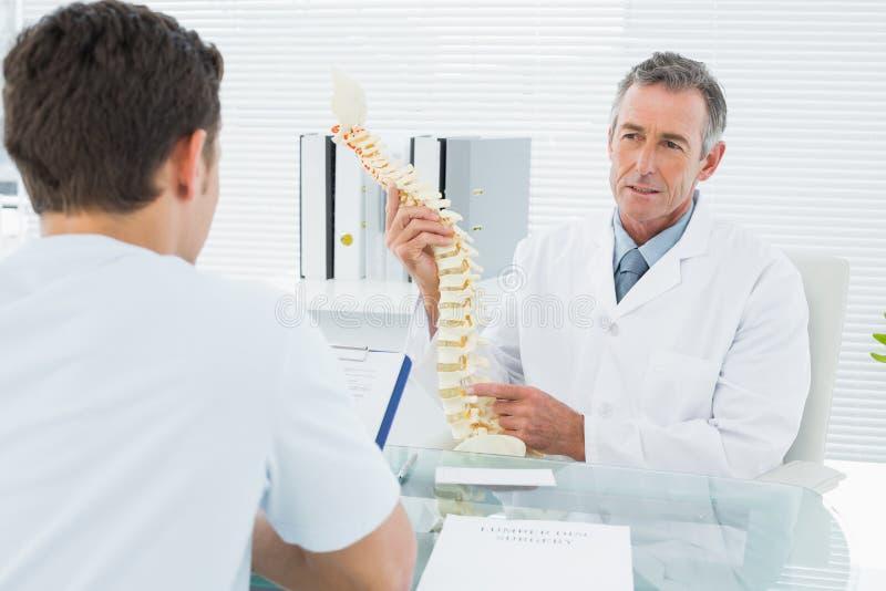 在办公室篡改解释脊椎对一名患者 免版税库存照片