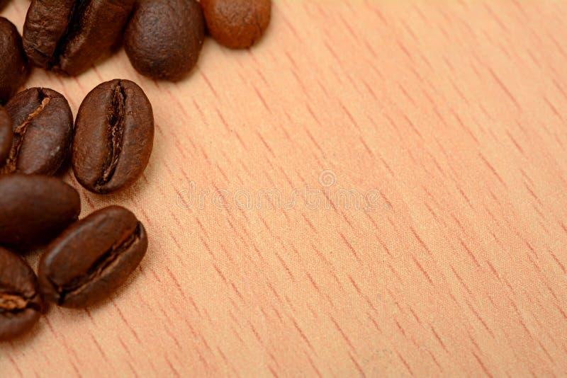 在办公室表横幅模板的烤咖啡豆 图库摄影