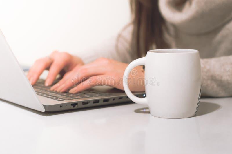 在办公室键入在有杯子的笔记本的妇女 免版税库存图片