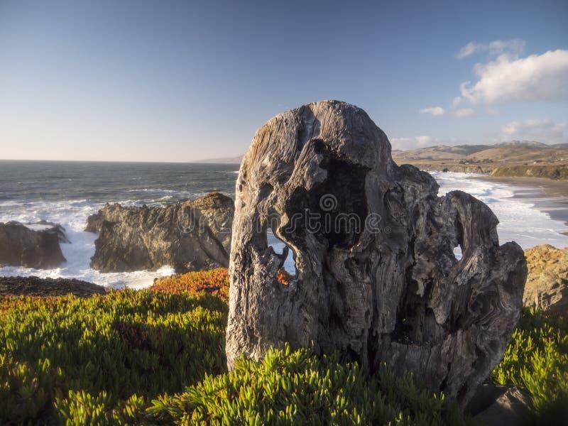 在加利福尼亚海岸的看法 库存照片
