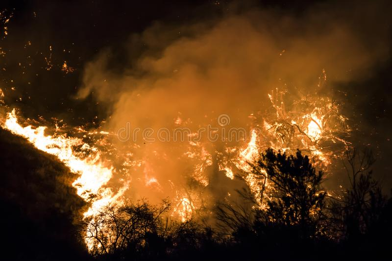 在加利福尼亚火期间,明亮的橙色火焰和炭烬在晚上烧 库存照片