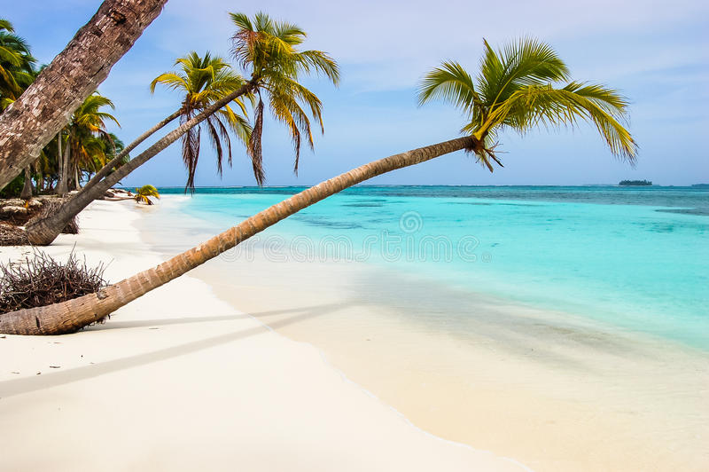 在加勒比岛上的天堂海滩 库存照片