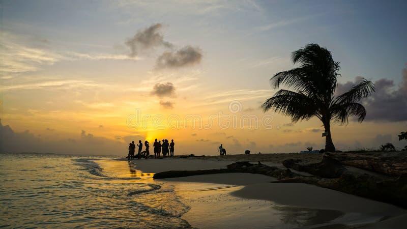 在加勒比海滩的日落与在圣布拉斯海岛上的棕榈树在巴拿马和哥伦比亚之间 免版税库存照片
