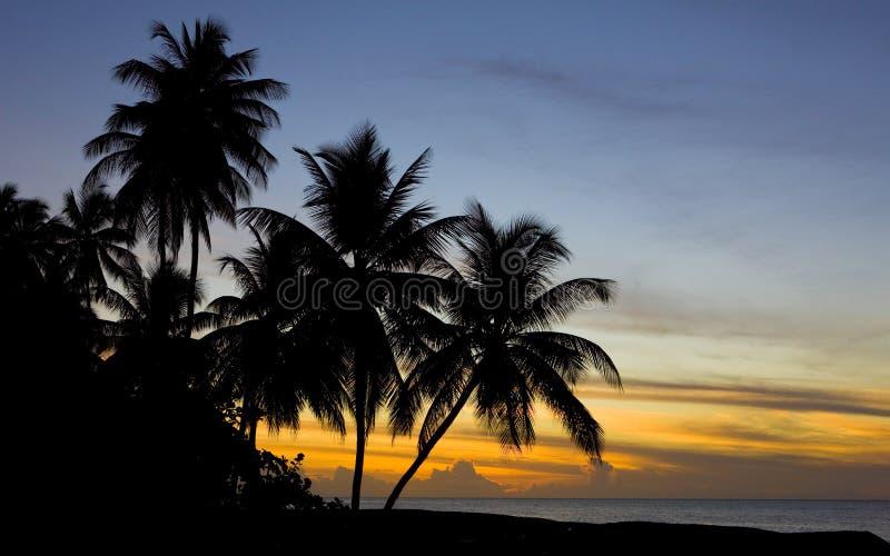 在加勒比海,乌龟海滩,多巴哥的日落 免版税库存照片