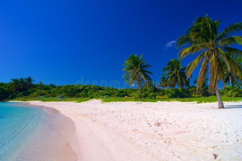 在加勒比海滩 免版税图库摄影