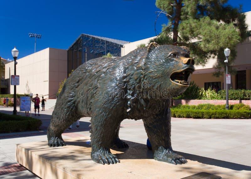 在加州大学洛杉矶分校的熊熊雕象 图库摄影