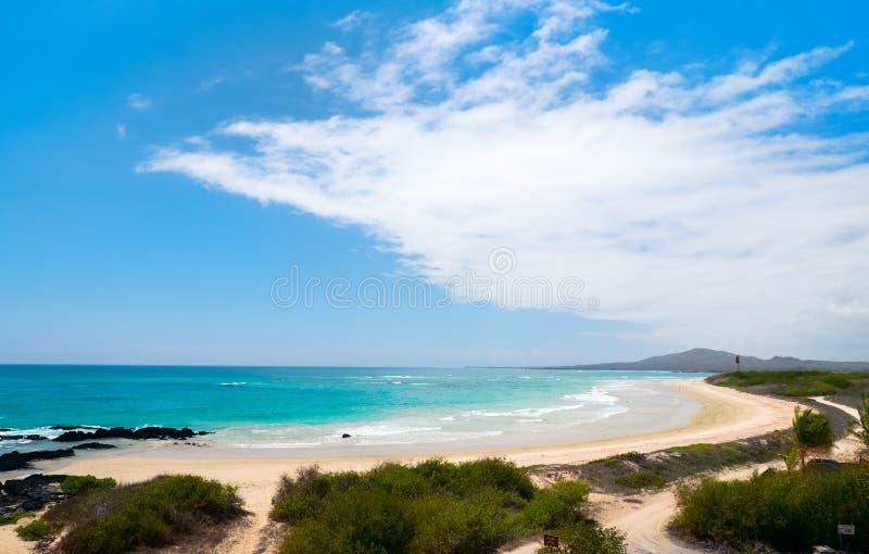在加拉帕戈斯伊莎贝拉岛海岛,厄瓜多尔的海滩 免版税库存照片