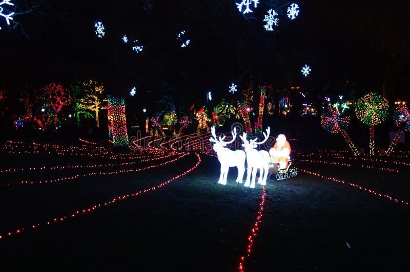 在动物园光的圣诞老人 库存照片