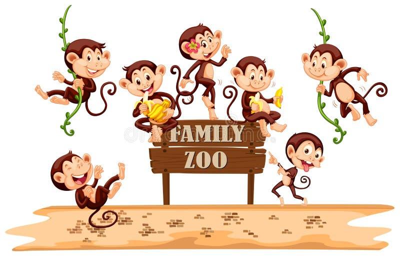 在动物园标志的许多猴子 向量例证