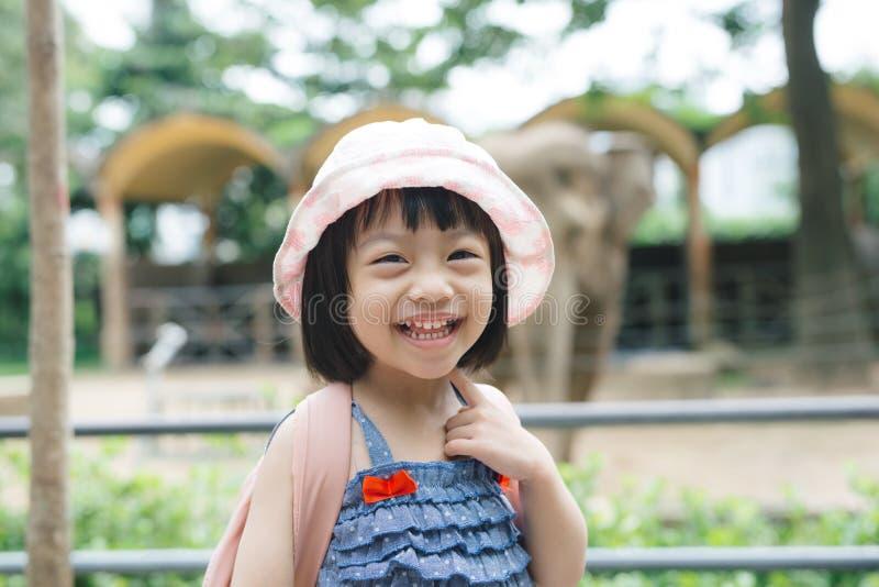 在动物园的逗人喜爱的小女孩观看的动物温暖和晴朗的s的 免版税库存照片