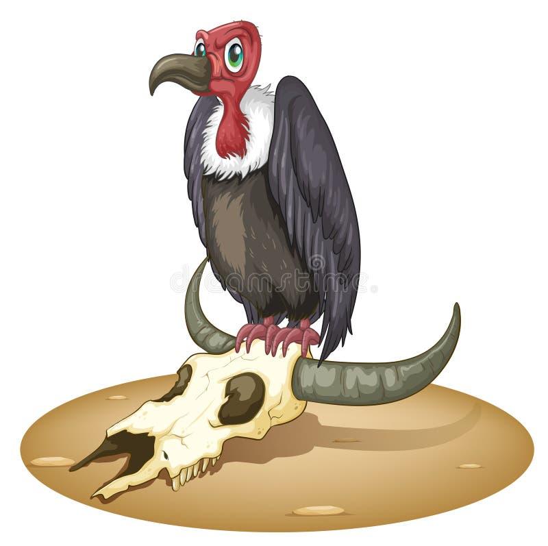 在动物的头上的一只恼怒的鸟 皇族释放例证